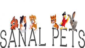 Sanal Pets ile Oyun Oyna Para Kazan