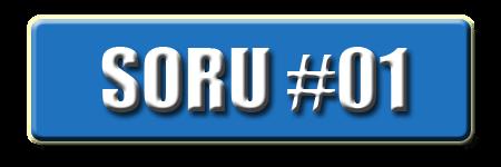 OnlineDarphane V5.00 Soru #01