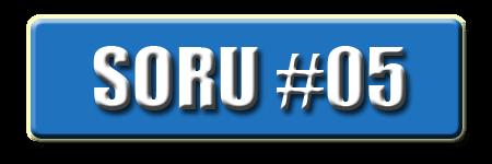 OnlineDarphane V5.00 Soru #05