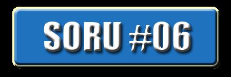 OnlineDarphane V5.00 Soru #06